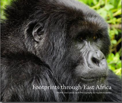 Footprints through East Africa